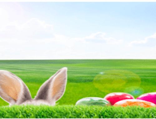 Wir wünschen allen ein entspanntes und frohes Osterfest