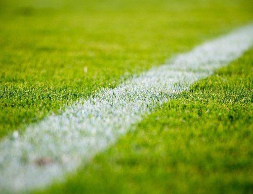 Fußball Ergebnisse & Termine